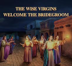 Wise Viergins PC