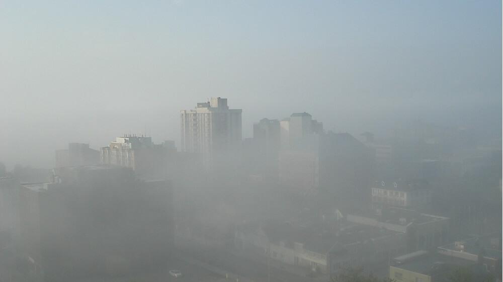 Who Should Take Responsibility for Smog?