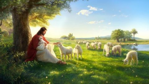 Bible Verses About God's Love - How Much of God's Love Do You Know?