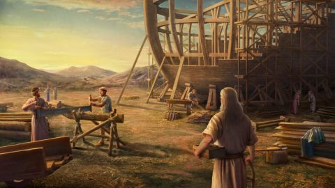Knowledge of Noah's Obedience