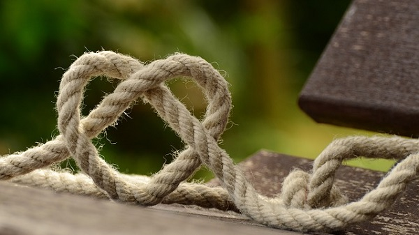 Learn Forgiveness—A Surprising Gain Brought by a Hard Knot