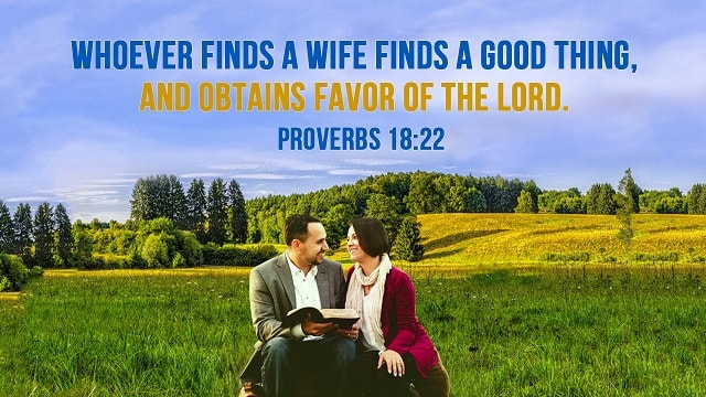 Bible Verses About Marriage - Love Your Wife