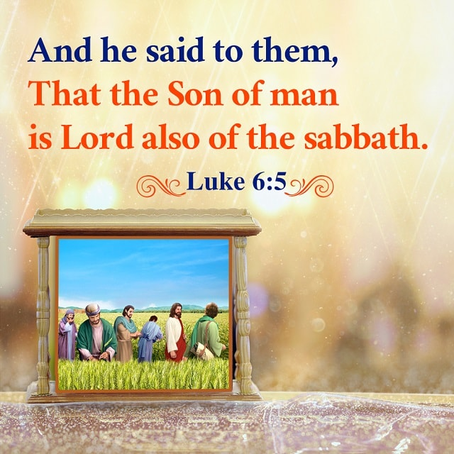 Son of man is Lord also of the sabbath- Luke 6-5