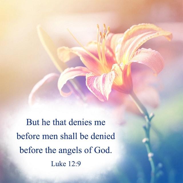 bible verse-Luke 12-9