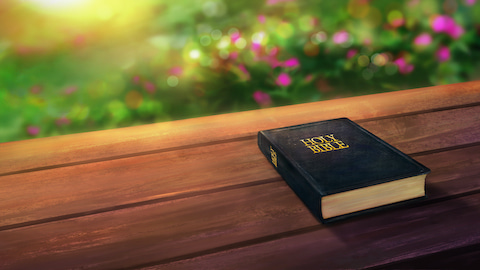 Jeremiah 10:23 Commentary – God Directs Our Steps