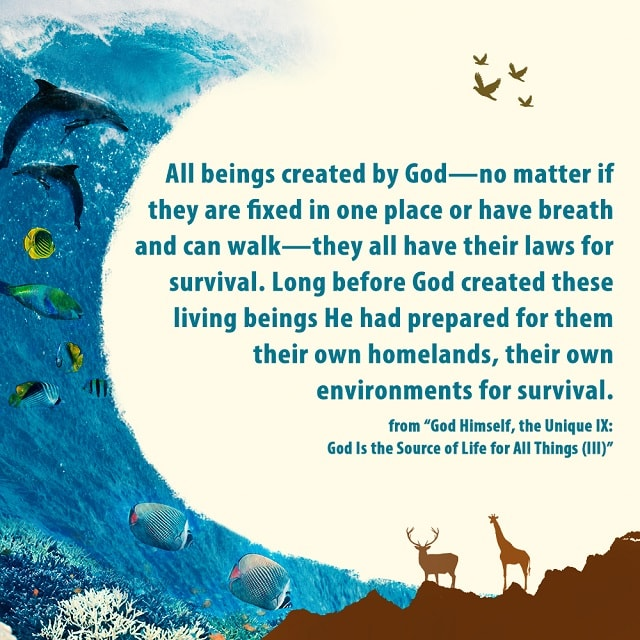 All beings created by God