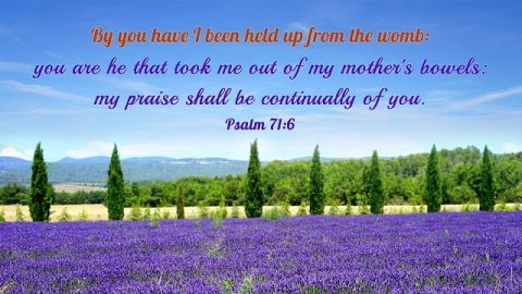 Bible Verse About Birthday - God Is the Source of Man's Life