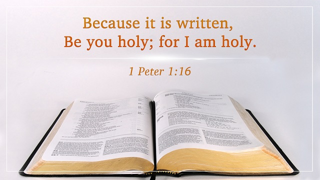 Bible Verses About Holiness - Without Holiness No Man Shall See the Lord