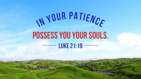 Bible Verses About Patience - God's Plan For Us