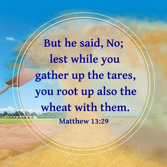 Bible Verse - Matthew