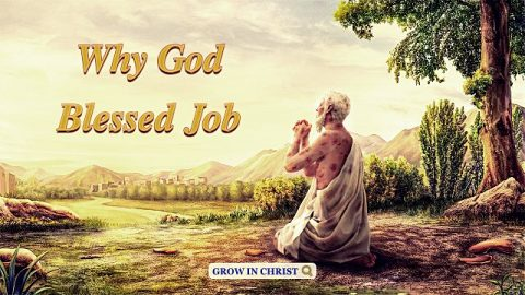 Why God Blessed Job