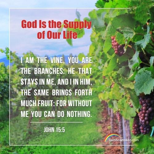 John 15:5 - Normal Relationship With God