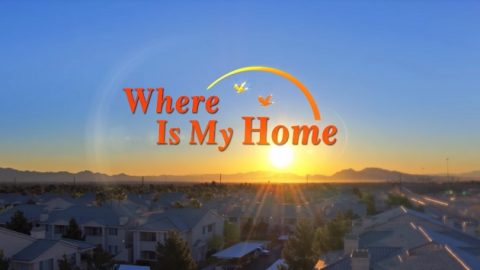 Movie Reviews—Finding a Harbor for the Soul: Understand the Moving Film Where Is My Home in 6 Minutes