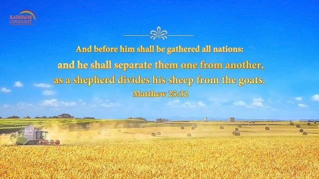 Armageddon, Bible Prophecy