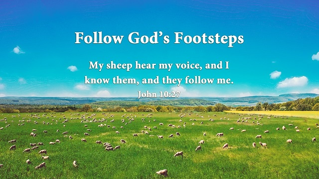 John 10:27 - My sheep hear my voice - bible verse of the day