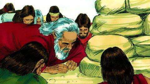 Noah's Sons - Bible Story - Genesis 9