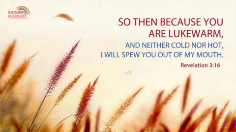 So Then Because You are Lukewarm — Revelation 3:16
