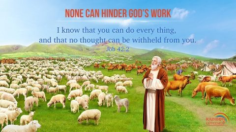 Job 42:2 - Knowing God