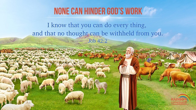 Job 42:2 - Knowing God - bible verse of the day