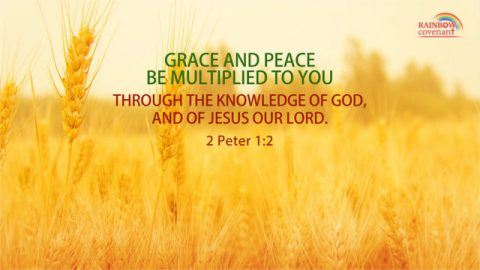But Grow in Grace, and In the Knowledge of Our Lord and Savior Jesus Christ — 2 Peter 3:18