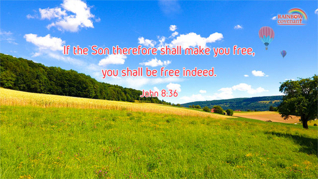 You Shall be Free Indeed — John 8:36