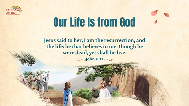 John 1125 - I Am the Resurrection and the Life - bible verse of the day