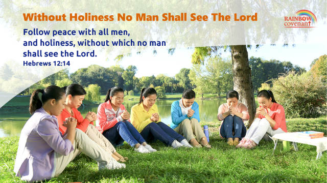 without holiness no man shall see the Lord Hebrews 12-14
