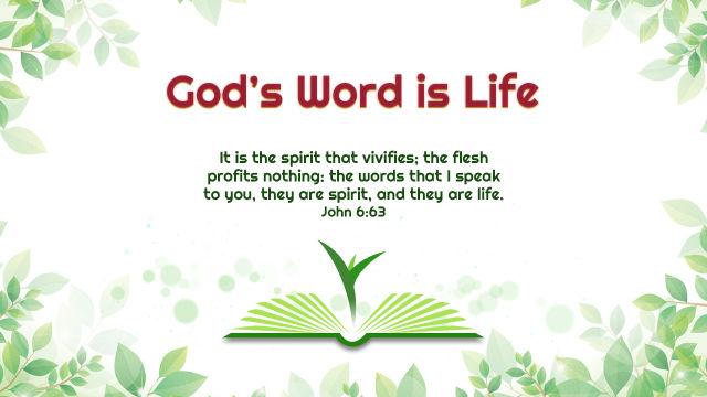 John 6-63