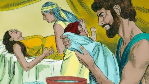 The Birth of Jacob and Esau - Bible Story