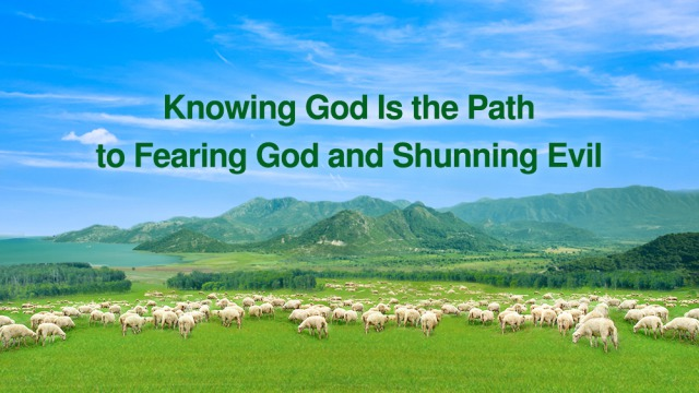 fearing God and shunning evil