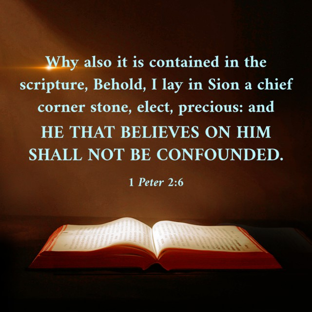 Those Who Believe on God Shall Not Be Confounded — 1 Peter 2:6