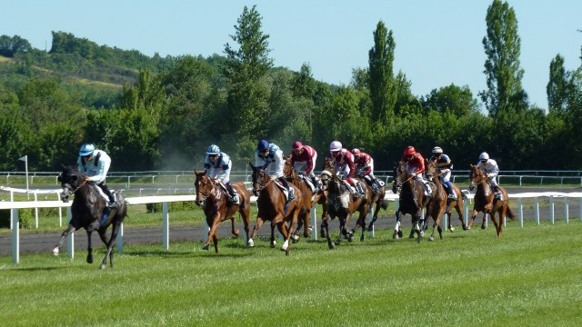 Betting on the Horses