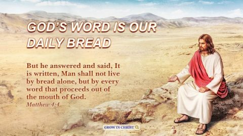 God's Word Is Our Daily Bread. A Commentary on Matthew 4:4