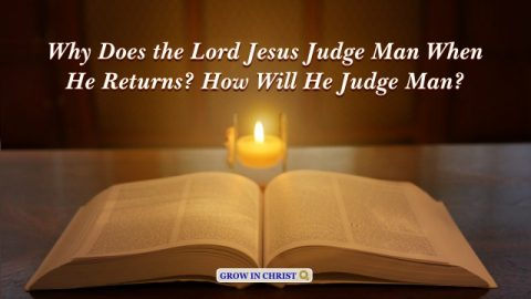 Bible Verses About Final Judgement