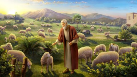 Bible Characters Solomon and Job Were Rich, but Why Were Their Outcomes Different?