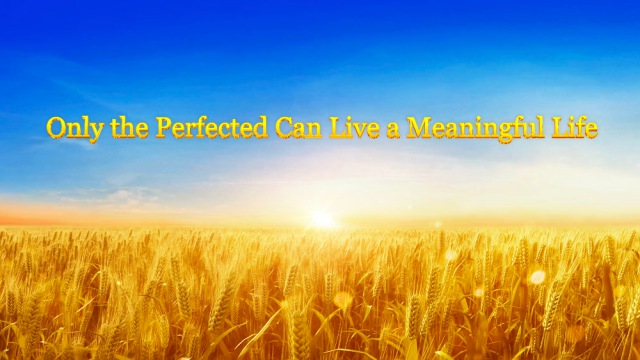 Only the Perfected Can Live a Meaningful Life