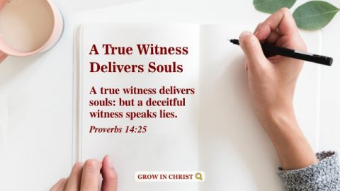 A True Witness Delivers Souls.  A Commentary on Proverbs 14:25