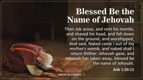 Blessed Be the Name of Jehovah. A Commentary on Job 1:20–21