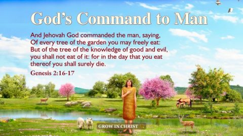 God's Command to Man—A Commentary on Genesis 2:16–17