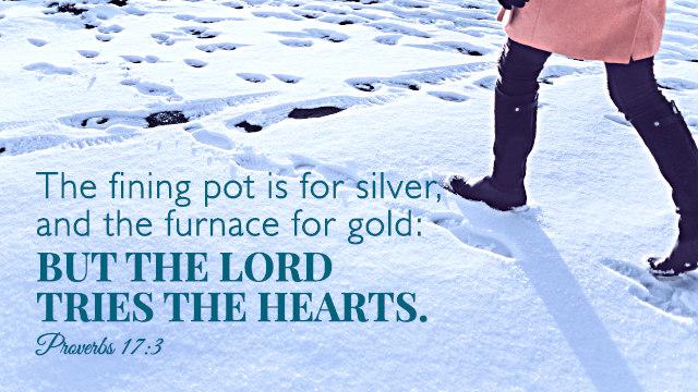 Proverbs 17:3