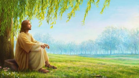 The Lord Jesus Himself prophesied that God would incarnate in the last days and appear as the Son of man to work