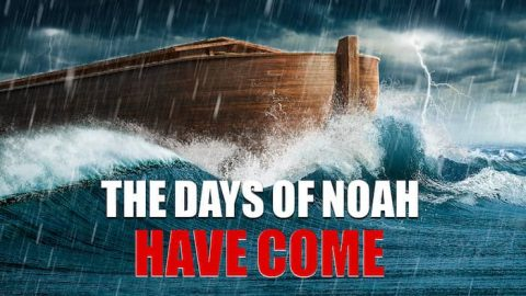 The Days of Noah Have Come: The Son of Man Has Appeared