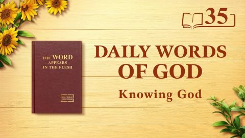 God's Work, God's Disposition, and God Himself II (Excerpt 35)