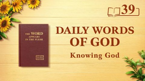 God's Work, God's Disposition, and God Himself II (Excerpt 39)